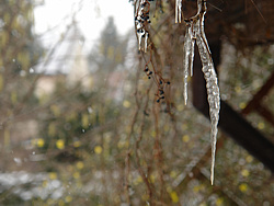 Foto von Donnerstag, 25.01.2007