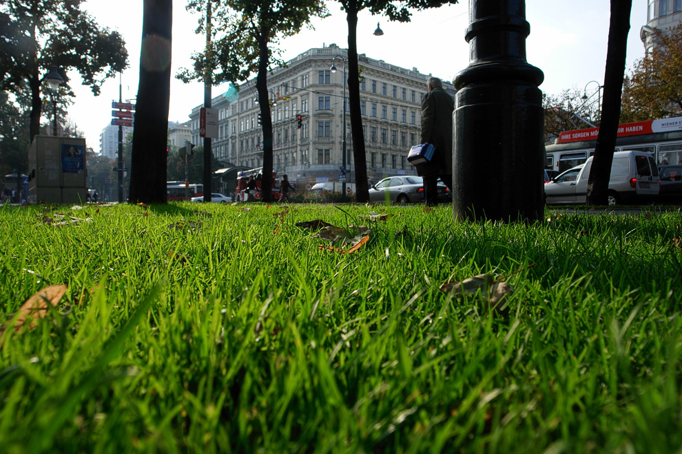 Foto von Donnerstag, 11.10.2007