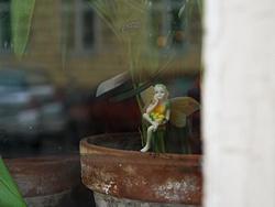 Foto von Donnerstag, 22.11.2007