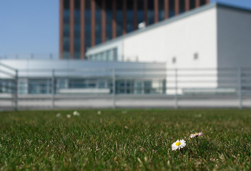 Foto von Donnerstag, 02.04.2009