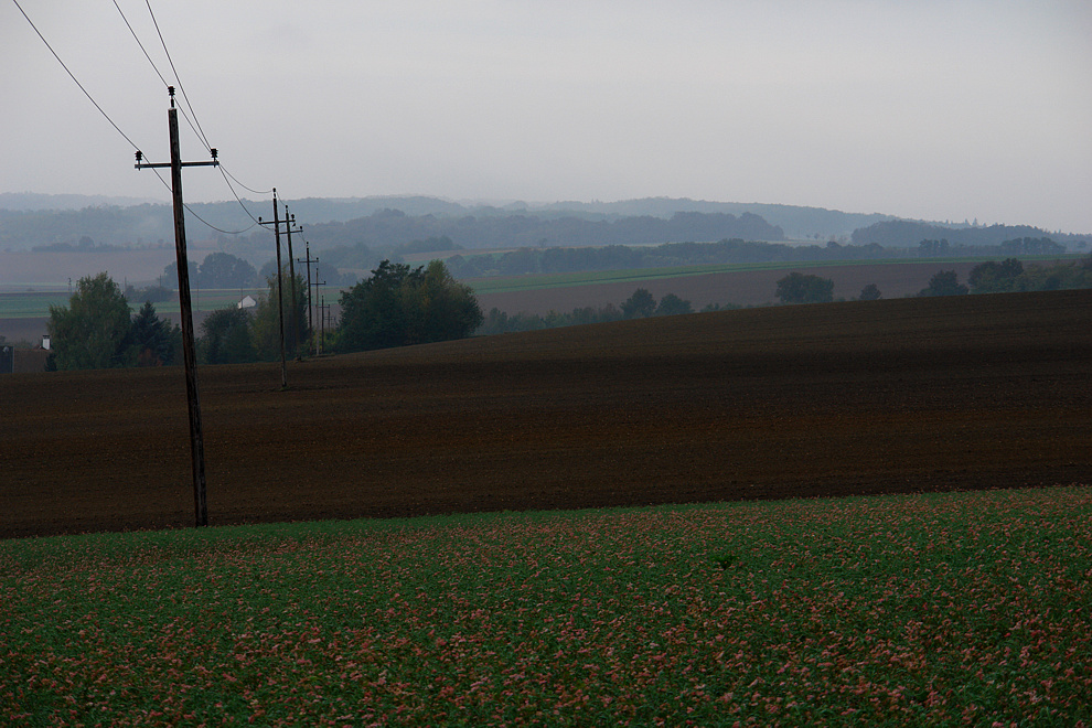 Foto von Freitag, 23.10.2009