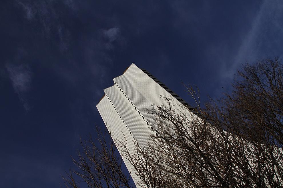 Foto von Sonntag, 29.11.2009