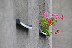 Foto von Montag, 09.07.2012