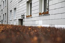 Foto von Dienstag, 27.11.2012
