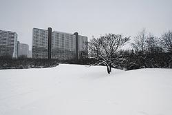 Foto von Freitag, 18.01.2013