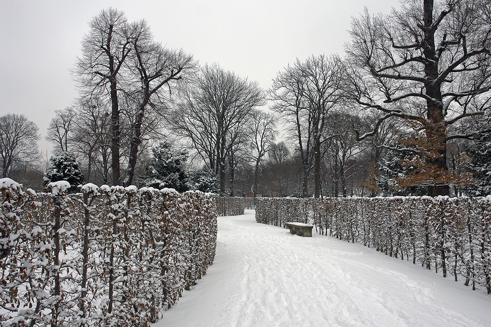 Foto von Dienstag, 12.02.2013