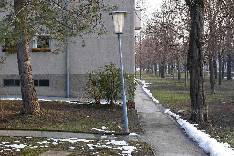 Foto von Donnerstag, 28.02.2013